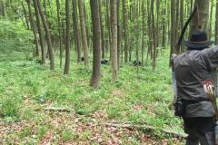 2016-05-14 Klosterturnier Willebadessen - 11 von 43