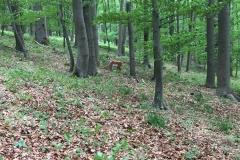 2016-05-14 Klosterturnier Willebadessen - 8 von 43