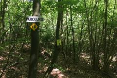Marsberg_Parcour_06-2017 - 9