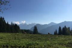 2017-08-29 SBC Goisern - Bad Goisern - 4