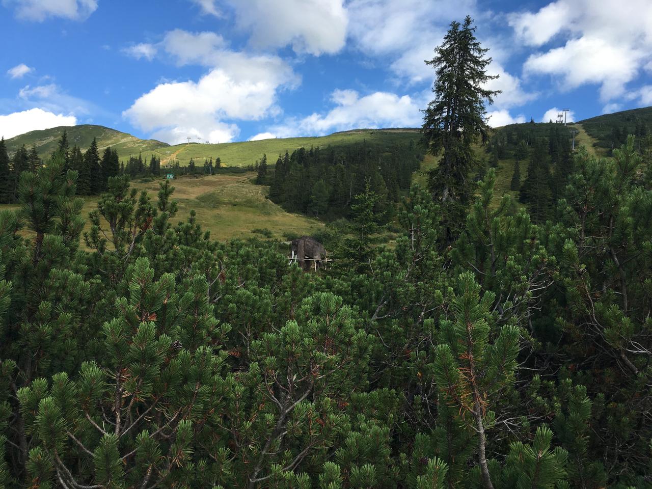 2017-08 Planneralm Landschaft - 5
