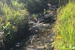 2017-08 Planneralm Landschaft - 15