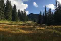 2017-08 Planneralm Landschaft - 19