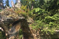 2017-08 Planneralm Landschaft - 20