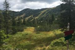 2017-08 Planneralm Landschaft - 7