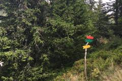 2017-08 Planneralm Parcour - 4