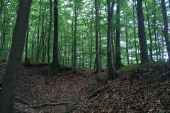 2018-05-19_Klosterturnier - 15