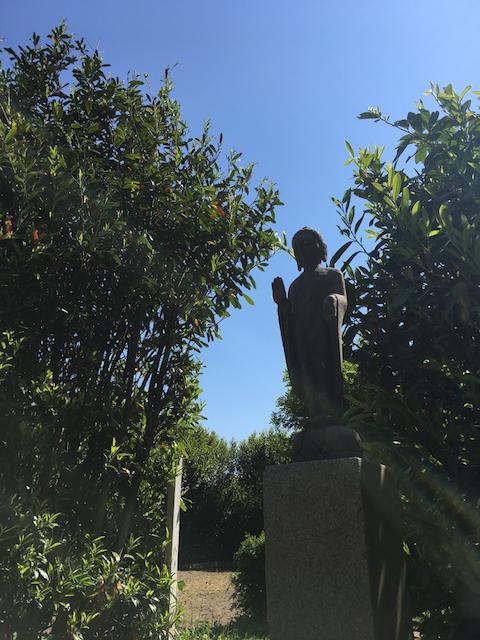 Zen Garten bei ARTS AND  MOVEMENTS